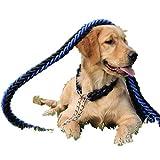 YAMEIJIA Hundeleine, Hund Kette, Großer Hund, Mittlerer Hund, Hyäne Seil, Goldenes Haar Labrador Hundehalsband, P-Kette, Haustierbedarf Groß,1.5M