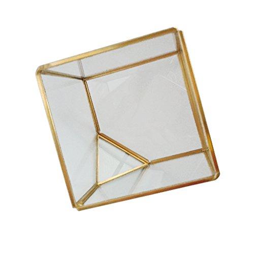 Sharplace Mini Glashaus Glas Terrarium für Sukkulente Pflanzen - L Gold