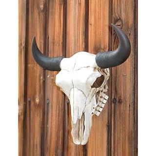 Ars-Bavaria Bisonschädel Tierschädel Schädel Kuhschädel Buffalo Büffel Kopf