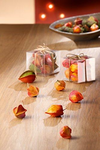 Deko Blüten Stoffblüten Physalis Blüten in PVC-Box herbstfarbene Früchte glatt und textil 7-12 Stück Gilde