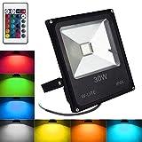 RGB Strahler mit Fernbedienung 30W LED Fluter Farbwechsel Außenstrahler Scheinwerfer Dimmbar IP66 Wasserdicht für Weihnachten, Party (Kein Stecker)