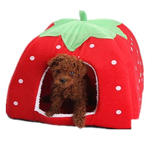katzeninfo24.de Demarkt Schöne Strawberry weicher Kaschmir Warm Pet Nest Hund, Katze, Bett klappbar (S, rot)