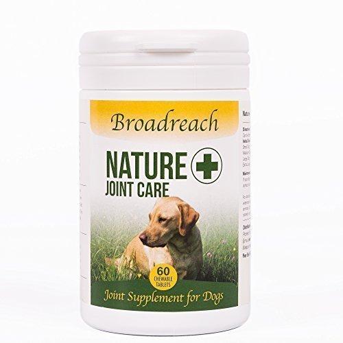 Gemeinsame Zuschlag für Hunde 60 tabletten Advanced Tiermedizin Formel 5 40+ kg Aus Natürlichen Inhaltsstoffen mit Glucosamin Chondroitin und Gelbwurz hergestellt in Großbritannien Nun zurück (Tabletten Chondroitin 60)