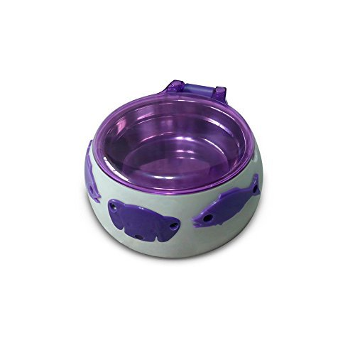 mangiatoia-automatica-per-cani-magic-dog-box