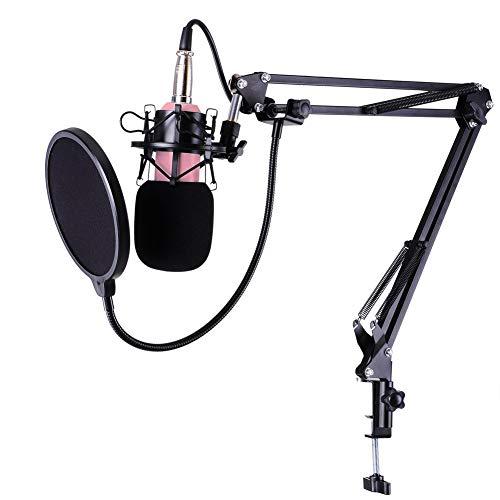 Micrófono De Estudio Grabación Micrófono De Condensador