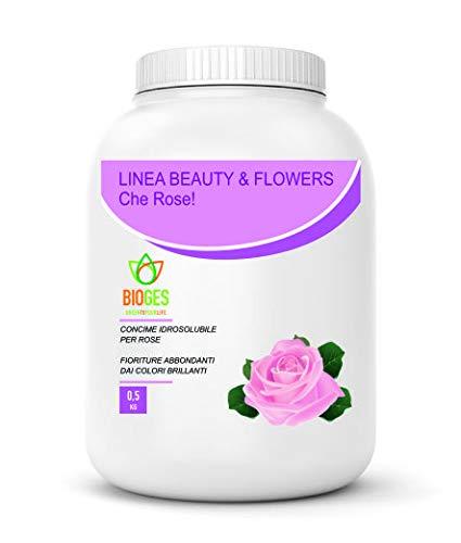 Bioges Che Rose! 0,5 Kg Concime idrosolubile per rose ad alberello, a cespuglio e rampicanti