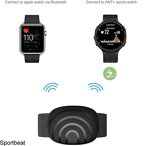 BerryKing Sportbeat pulsera correa de brazo BLUETOOTH & ANT+ Monitor de frecuencia cardíaca HRM RUNTASTIC WAHOO STARVA Garmin TomTom iPhone iPhone Android