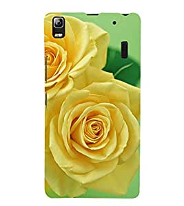 ifasho Designer Back Case Cover for Lenovo K3 Note :: Lenovo A7000 Turbo (Renanthera Imschootiana Rose Brooch Rose Soap Elect Establishment Society Celebrity)