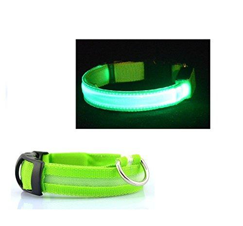 LED Hundehalsband Leucht-Halsband grün 48cm verstellbar Sicherheitshalsband leuchtendes Hundehalsband LED Band Hund Hundehalsband mit Licht mittel groß leuchtend Hunde-Sicherheitsband
