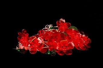 LightO 70007 10-Watt Lily LED String Light (Red)