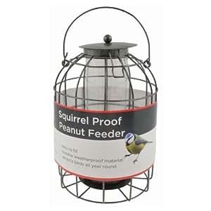 bird peanut futterhaus eichh rnchen proof wild bird care. Black Bedroom Furniture Sets. Home Design Ideas