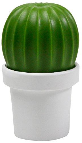 Salz- und Pfefferstreuer Kaktus, Geschenk Maestro - Kaktus Salz