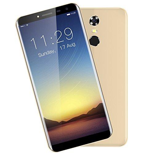 Mobile frei 4g 5.5Zoll Oukitel C8(18: 9Seitenverhältnis, Android 7.0, 3000mAh Akku, 2GB RAM 16GB ROM, Kamera 5MP + 13MP, Dual SIM, Identifizierung von Fingerabdrücken)