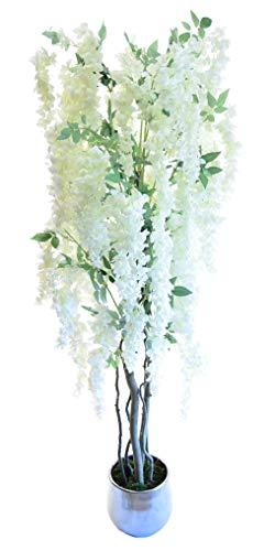 Maia Shop Wisteria natürliche Stämme aus den besten Materialien, ideal für Dekoration zu Hause, künstlicher Baum (180 cm), gemischt (Von Baum Haus Zu)