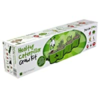 Healthy Caterpillar Grow Kit by Plant Theatre - Educational Gift