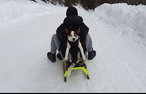 Dog carrier Small bis 10kg Körpergewicht -