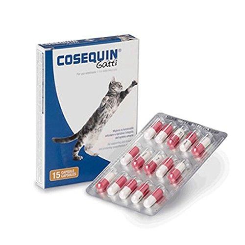 COSEQUIN GATTI 15CPS