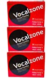 VocalZone Throat Pastilles (24 x 3) Multipack Offer