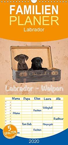 Labrador - Welpen - Familienplaner hoch (Wandkalender 2020, 21 cm x 45 cm, hoch)