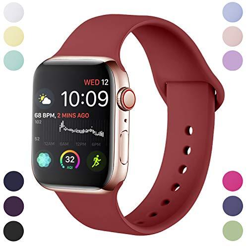 Hamile Correa Compatible con Apple Watch 38mm 40mm