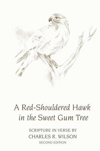 Sweet Gum Tree (A Red-Shouldered Hawk  In The Sweet Gum Tree: Scripture in Verse)