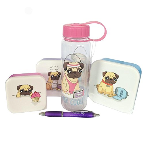 back-to-school-hamper-with-fun-pug-plastic-boxes-and-bottle-plus-free-premier-life-store-pen