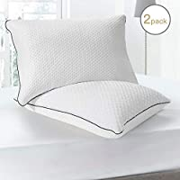 BedStory Pillows for Sleeping 2 Pack, Hotel Pillows with Soft Plush Fabric Covers, Down Alternative Bedding Pillows for Neck/Shoulder Pain/Allergy Sufferers and Back/Stomach/Side Sleepers