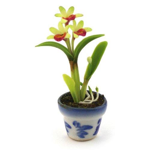 MyTinyWorld Maison de poupées miniature Vert Soph Orchidée