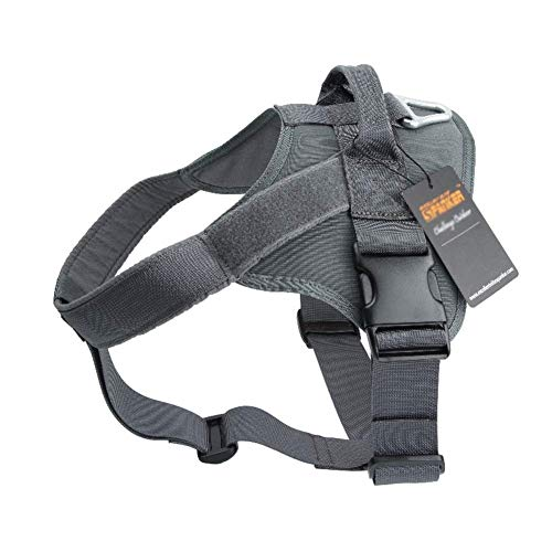 Xianshu No-Pull Tactical Dog Weste Harness Mit Leine, Soft Outdoor Training Brustgurt + Leine Kleidung Traktion Für Kleine, Mittelgroße Hunde Rope Teddy Safety Buffer (Color : Gray, Size : XL) -