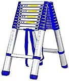 MJK Scaletta, scaletta di estensione Scaletta telescopica 3,8 m/Scaletta telescopica in alluminio portatile Scaletta per soppalco casa,Scala a spina di pesce-2.9m