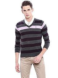 Arrow Sports Mens Wool Sweater (SW AS B SL REG SOL BRW A12ASBASW025C3_S_Dk. Brown)