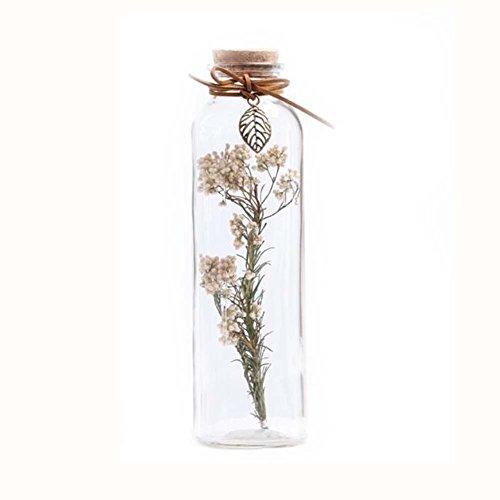 Black Glas Star Medium (DIY getrocknete Blumen, die Flaschen-Glas-Dekorations-Flasche # 2 wünschen)