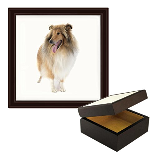 rough-collie-dog-image-wooden-jewellery-trinket-box