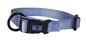 Hamilton 1-Inch Adjustable Dog Collar, Large, Fits 18-Inch by 26-Inch, Berry Blue