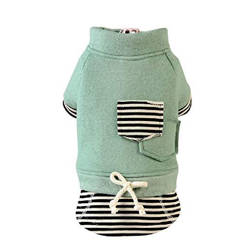 QLMS Zwei-beinige Frühjahrs- und Herbstmodelle sowie Samtkleidung Teddybär Bär dünnes Hemd Baumwolle Welpen Welpen niedlich lässig halblanger Rock (Color : Green, Size : L)