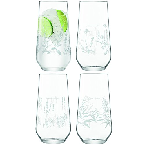 LSA International RBG Kew vaso de tubo cristal, 505 ml, juego de 4, t