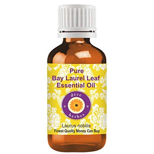 Huile essentielle feuille de laurier pure baie (Laurus nobilis) Deve Herbes 100%...