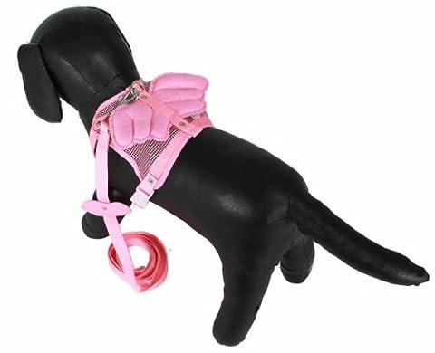 Petites races de chien réglable Ange ailé Harnais et Laisse assortis Lot Baby Bleu ou Rose