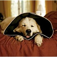 All Four Paws Comfy Cone - SMALL. Fits large cat/Yorkshire Terrier