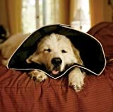 Pet-Bliss All Four Paws Comfy Cone Weiche Halskrause für Hunde, klein Für größere Katzen oder Yorkshire Terrier