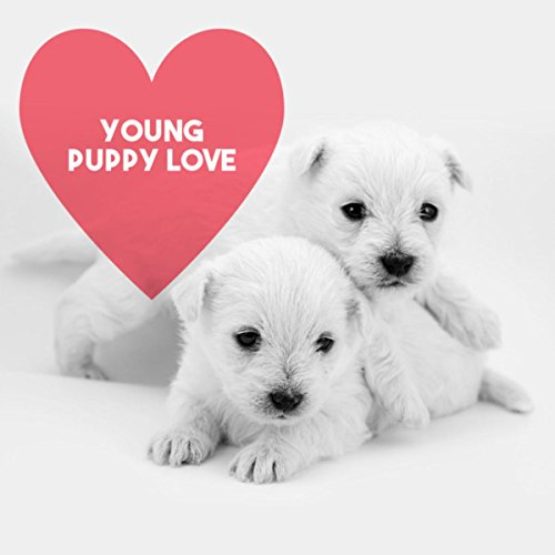 young-puppy-love