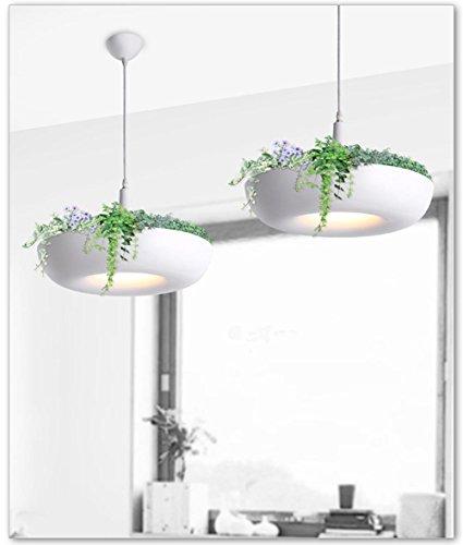 ytb-creatif-balcon-bureau-de-la-personnalite-artistique-lustre-nordic-jardins-de-plantes-en-pot-susp