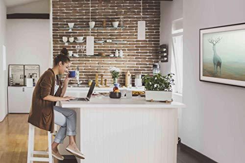 fernseher rahmen Samsung LS03 The Frame 123 cm (49 Zoll) LED Lifestyle Fernseher (Art Mode, Ultra HD, HDR, Smart TV)