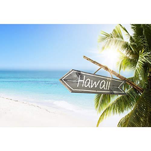 Cassisy 3x2m Vinyl Meer Fotohintergrund Hawaii Banner Tropischer Sandstrand Sunny Sky Clouds Fotoleinwand Hintergrund für Fotoshoot Fotostudio Requisiten Party Photo Booth