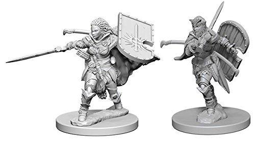 Pathfinder: Deep Cuts Unpainted Miniatures: Human Female Paladin Pathfinder-miniaturen