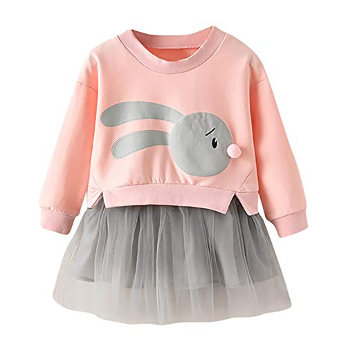 MOIKA Baby Mädchen Kleider, (12Monate-5Years Old) Kinder Baby Mädchen Cartoon Bunny Prinzessin Patchwork Sweatshirt Tutu Tüll Kleid Kleidung (Bunny Für Kleid Babys)