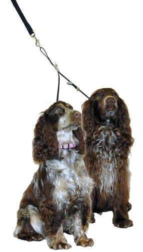 Company of Animals Double Dog Coupler Doppelleine für Hunde, L