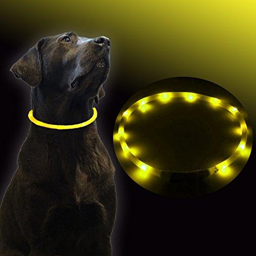 UC-Express Hundehalsband LED Gelb Leuchthalsband Hunde Sicherheitshalsband Leuchtschlauch