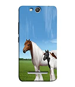 PrintVisa Grey Bay Horses 3D Hard Polycarbonate Designer Back Case Cover for Micromax Canvas Juice 3 Q392