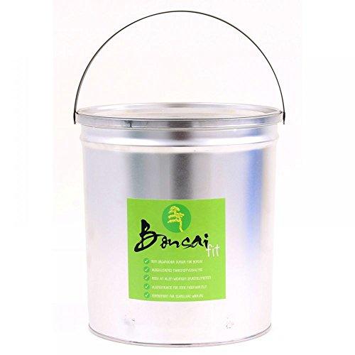 Bonsai-Shopping 63023